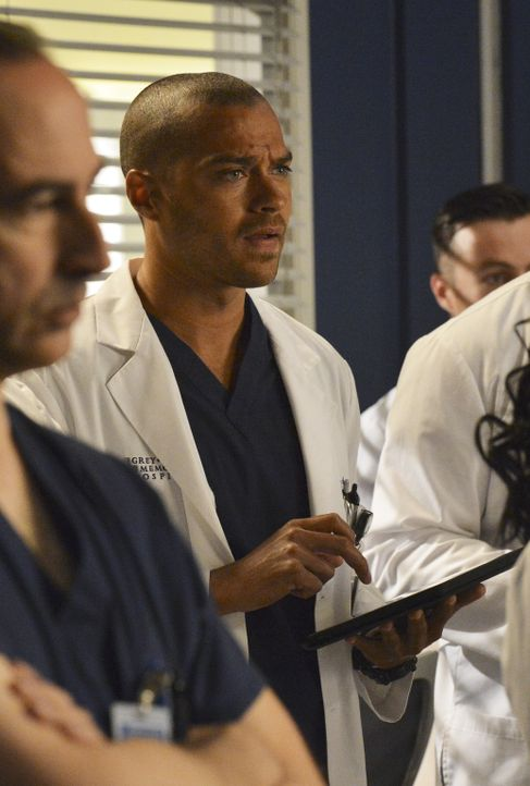 April und Jackson (Jesse Williams, M.) erwarten ein Baby, doch in ihrer ersten Ehekrise fällt es ihnen schwer, sich darüber zu freuen ... - Bildquelle: ABC Studios