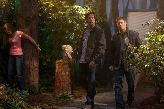 Supernatural - Kämpfen wieder gemeinsam gegen das Böse: Sam (Jared Padalecki,...