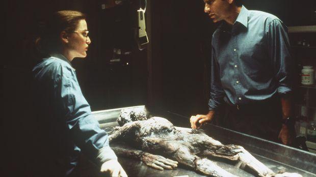 Die studierte Medizinerin Scully (Gillian Anderson, l.) glaubt nur an wissens...