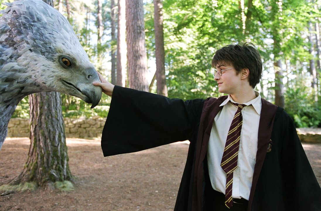 In seinem dritten Schuljahr auf Hogwarts lernt Harry (Daniel Radcliffe, r.) Seidenschnabel kennen, ein magisches Tier der Gattung 'Hippogreif' - hal... - Bildquelle: Warner Television