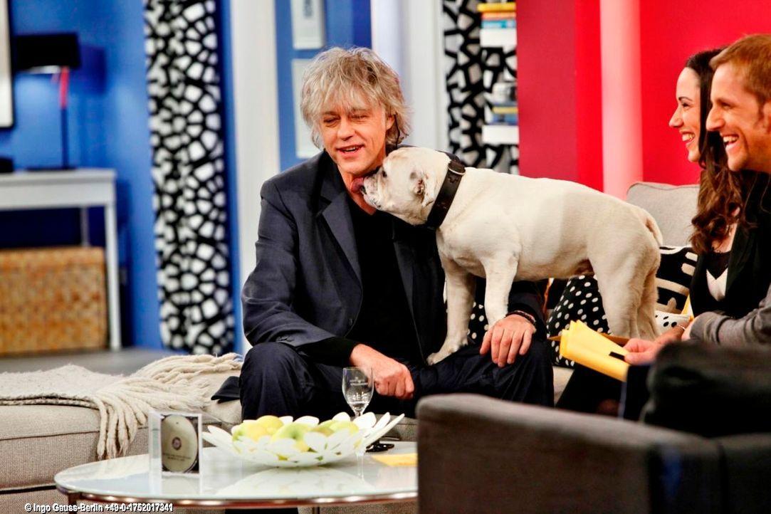 fruehstuecksfernsehen-studiohund-lotte-in-action-im-studio-113 - Bildquelle: Ingo Gauss