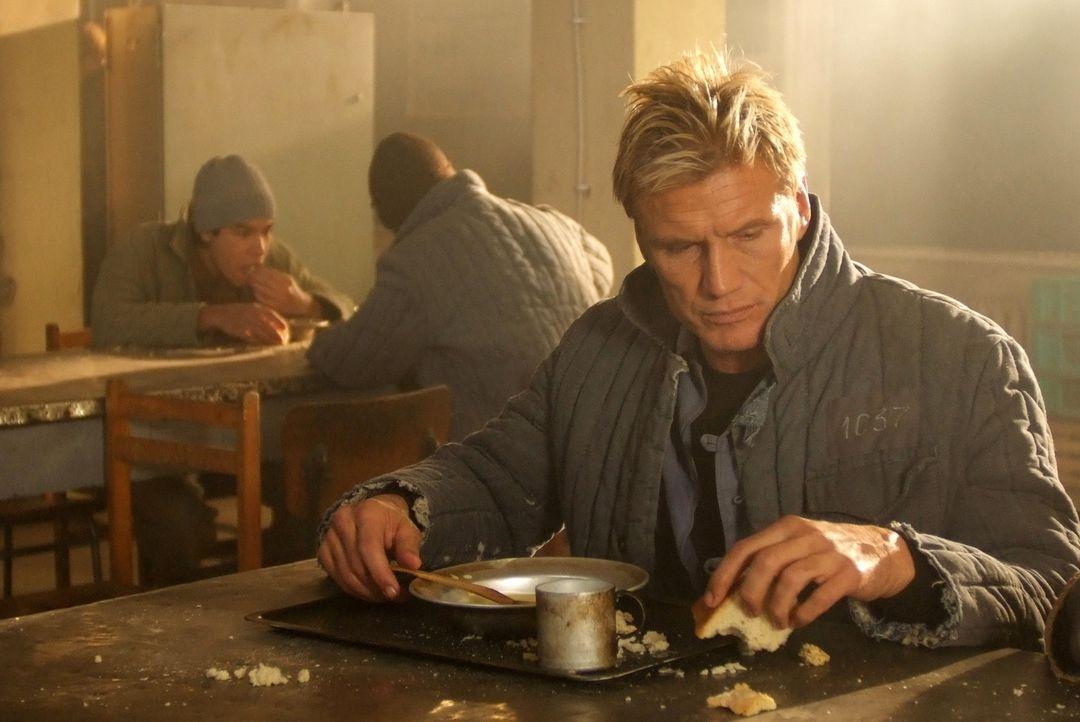 Der Ex-Marine Mike Riggins (Dolph Lundgren) macht im Ostblock geheime Waffengeschäfte, bis er im Gefängnis landet. Seine Chancen, dort je lebendig... - Bildquelle: Nu Image