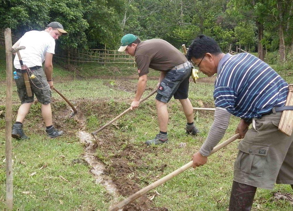 Tausche hoch technisierte Stelle als Landwirt in Deutschland gegen mühevolle Feldarbeit mit Wasserbüffel in Thailand! Genau auf dieses Job-Tausch-... - Bildquelle: kabel eins