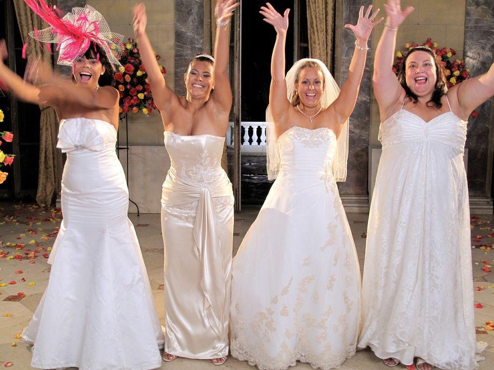 Welche Braut wird die traumhaften Luxus-Flitterwochen gewinnen? Jennifer (r.), Kaity (2.v.l.), Michelle (2.v.r.) oder Karin (l.)? - Bildquelle: 2011 Discovery Communications, LLC