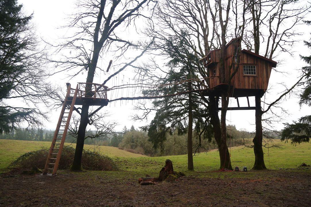 Die Baumhausbauer sollen in Oregon für einen Baumkletter-Meister und dessen Familie ein 18 qm großes Eichenbaumhaus zimmern. Leichter gesagt als get... - Bildquelle: 2015, DIY Network/Scripps Networks, LLC. All Rights Reserved.