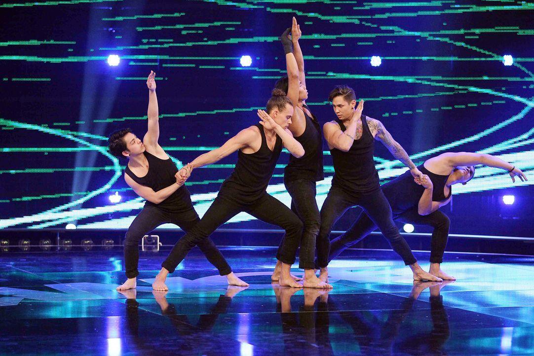 Got-To-Dance-Contrast-04-SAT1-ProSieben-Guido-Engels - Bildquelle: SAT.1/ProSieben/Guido Engels
