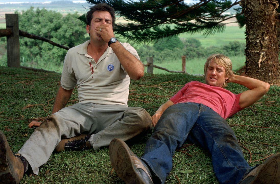 Geraten gewaltig aneinander: Bob (Charlie Sheen, l.) und Jack (Owen Wilson, r.) ... - Bildquelle: Warner Bros.
