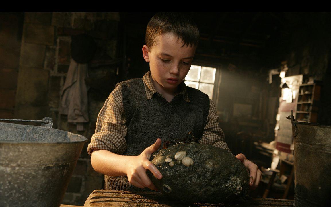 Wie einen kleinen Schatz hütet Angus (Alex Etel) das gefundene Ei, aus dem schon bald ein kleiner temperamentvoller Wasserdrache schlüpft ... - Bildquelle: CPT Holdings, Inc. All Rights Reserved. (Sony Pictures Television International)