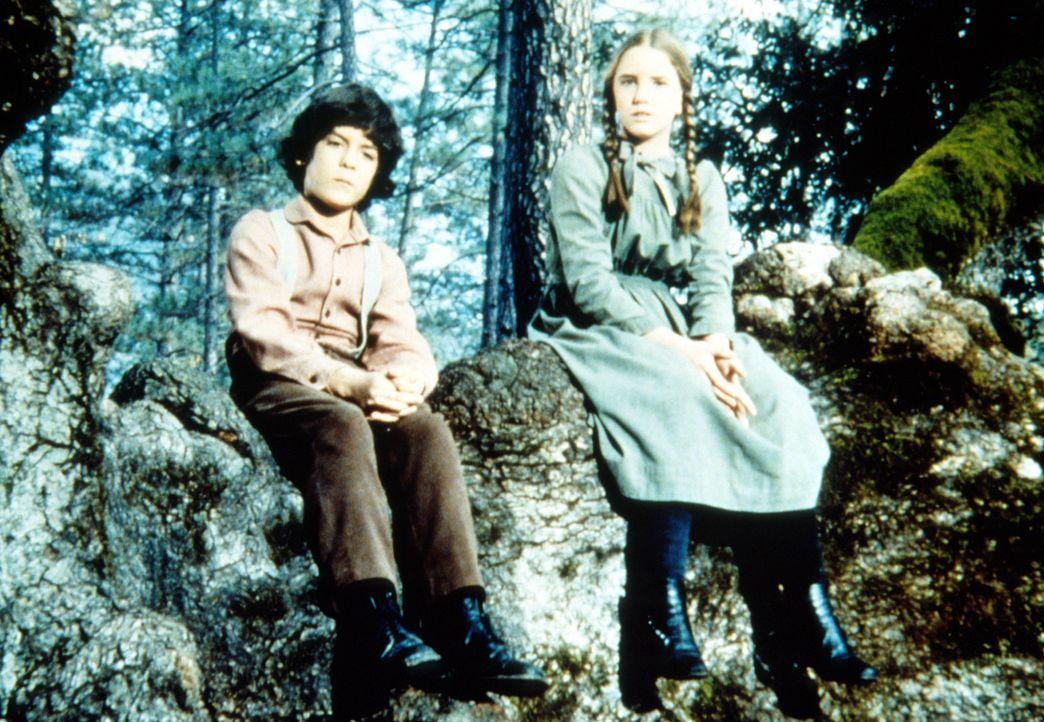Laura (Melissa Gilbert, r.) und Albert (Matthew Laborteaux, l.) hören ihrem kranken Freund zu, der ihnen erzählt, dass er bald sterben wird. - Bildquelle: Worldvision