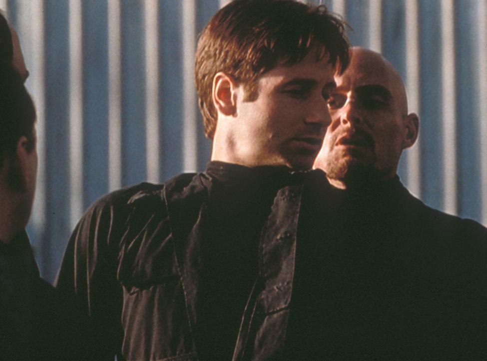 Mulder (David Duchovny, M.) wird von Mitgliedern einer gegen den Staat gerichteten Miliz entführt und einem brutalen Verhör unterzogen. - Bildquelle: TM +   2000 Twentieth Century Fox Film Corporation. All Rights Reserved.