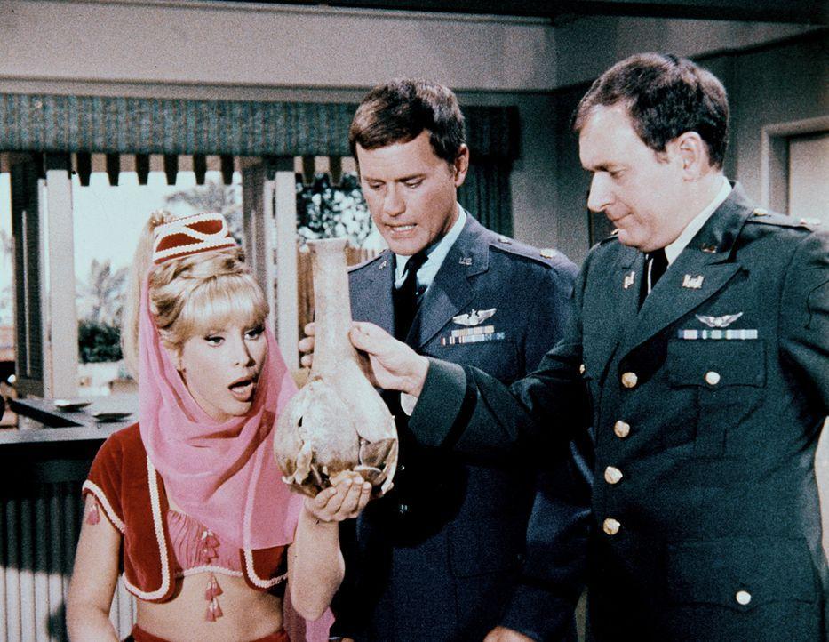 Tony (Larry Hagman, M.) und Roger (Bill Daily, r.) müssen mit ansehen, wie Jeannie (Barbara Eden, l.) ihre magischen Kräfte verliert, weil sie unglü... - Bildquelle: Columbia Pictures