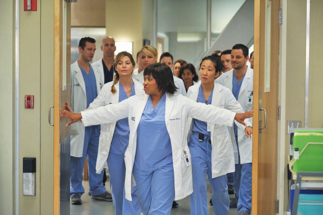 Werden von Miranda Bailey (Chandra Wilson, vorne) auf die bevorstehende Domino-Operation vorbereitet: Izzie (Katherine Heigl, 4.v.l.), Lexie (Chyler... - Bildquelle: Touchstone Television