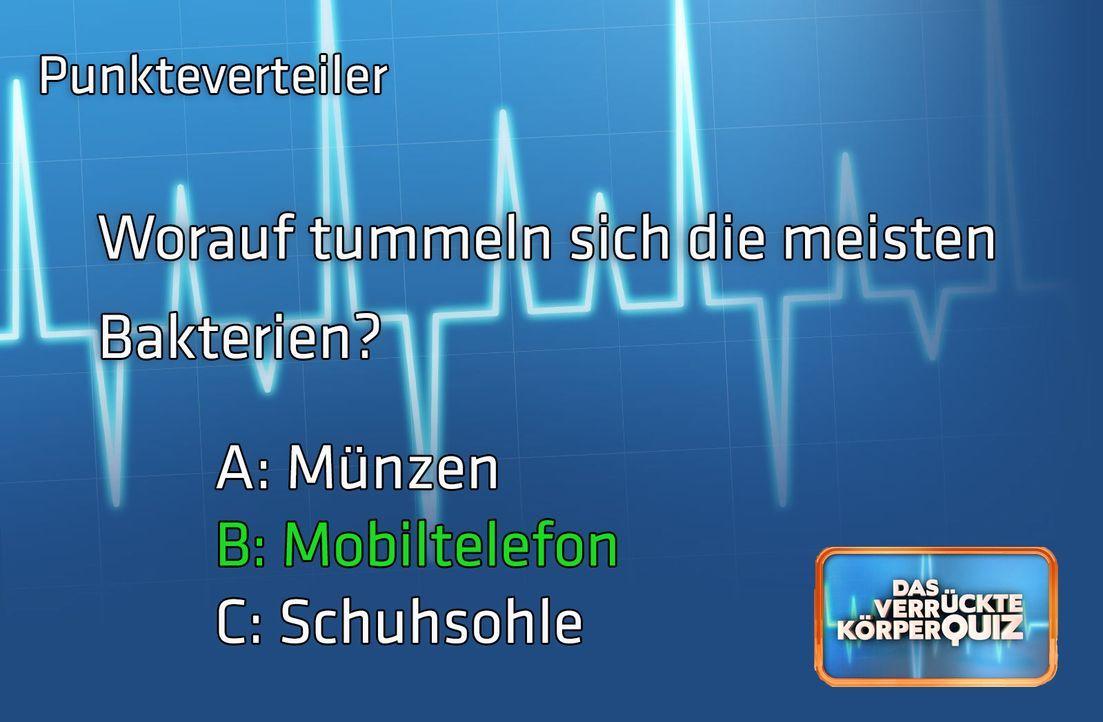 Frage2Antwort