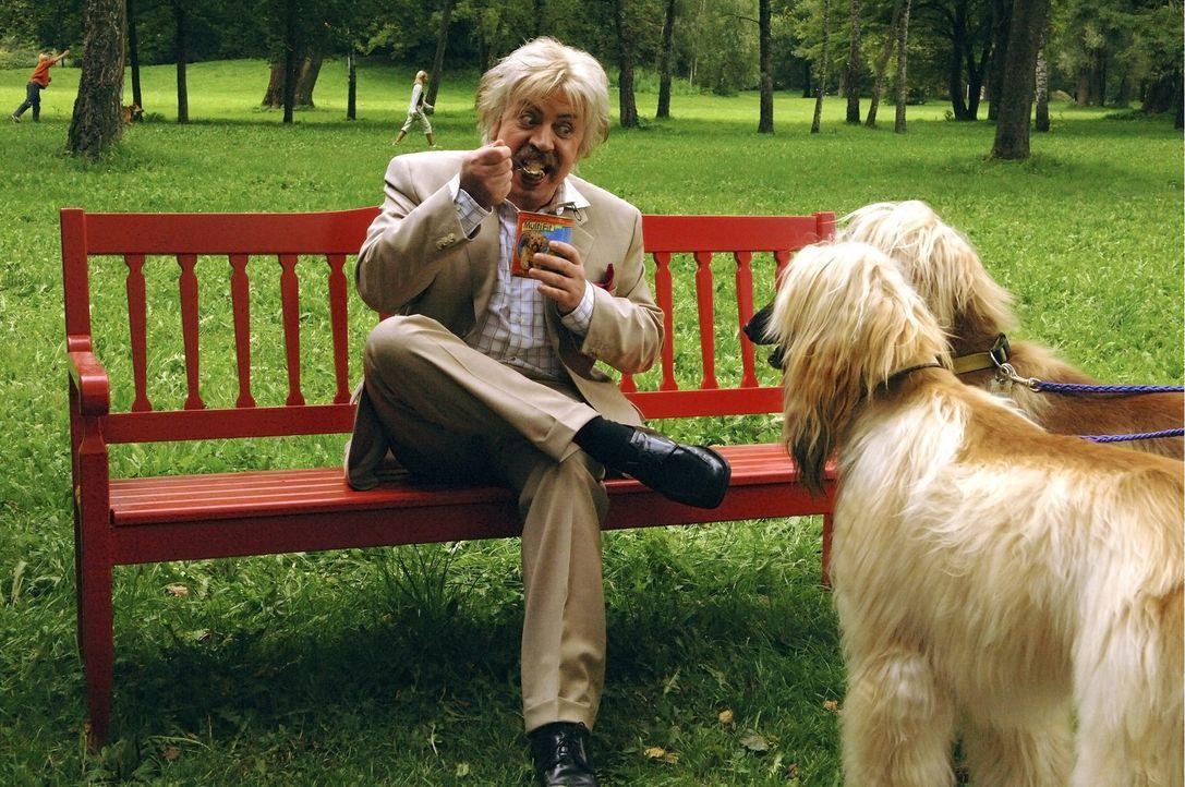Nachdem er an einer blauen Flüssigkeit in der Apotheke seines Herrchens schleckt, verwandelt sich Hund Bello (Armin Rhode) in einen Menschen. Einzi... - Bildquelle: Constantin Film Verleih GmbH