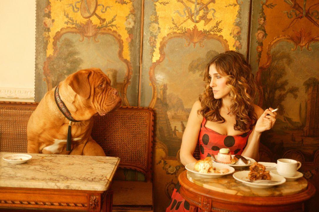 In der Stadt der Verliebten, Paris, fühlt sich Carrie (Sarah Jessica Parker) zunächst keineswegs wie im siebten Himmel ... - Bildquelle: Paramount Pictures