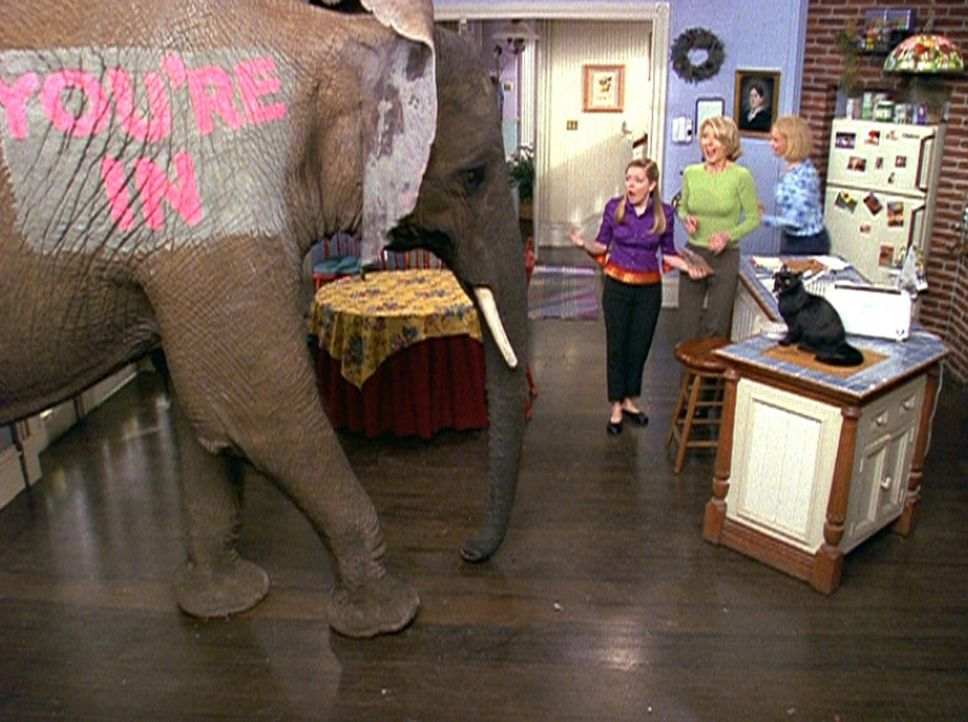 """Sabrina (Melissa Joan Hart, l.) bekommt ihre erste Zusage für ein College von einem """"Zulassungselefanten"""" überbracht. - Bildquelle: Paramount Pictures"""