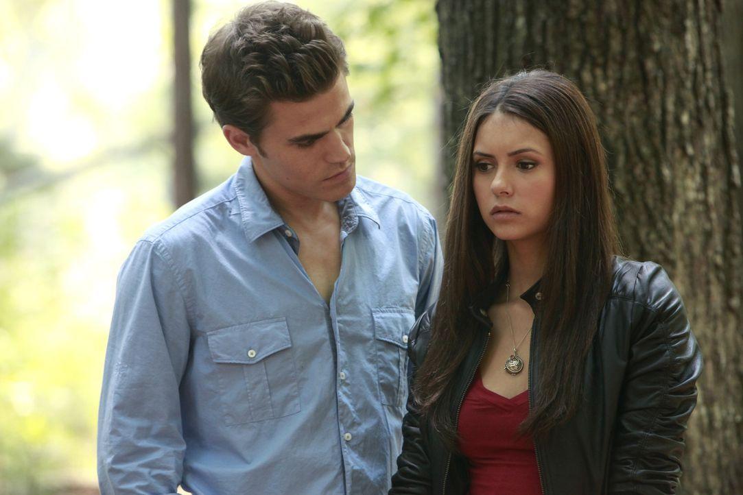 Stefan tröstet Elena  - Bildquelle: Warner Bros. Entertainment Inc.