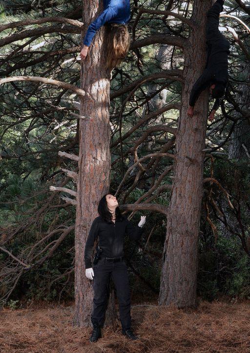 In den Wäldern vor Idaho macht Emily Prentiss (Paget Brewster) eine grausame Entdeckung ... - Bildquelle: Touchstone Television