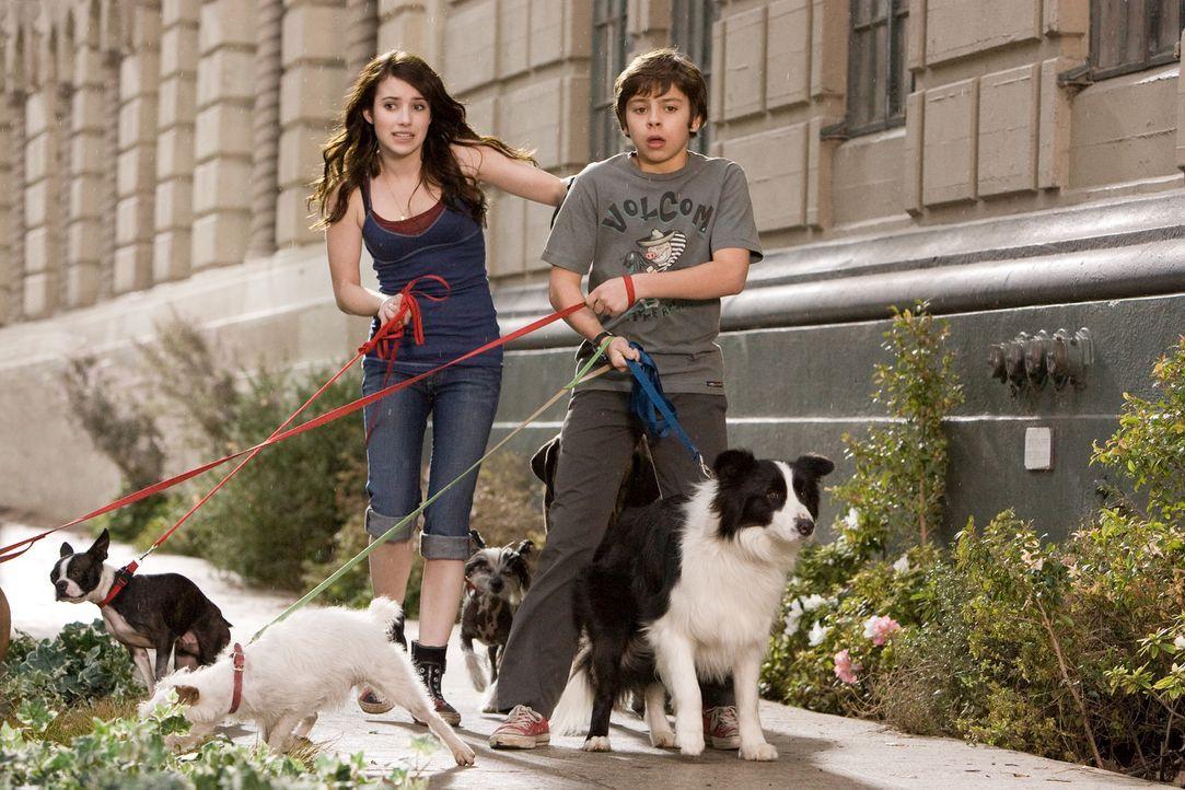 Versuchen alles, um ihre Hunde samt Herberge zu retten Andi (Emma Roberts, l.) und Bruce (Jake T. Austin, r.) ... - Bildquelle: MMVIII MavroCine Pictures GmbH & Co. KG All Rights Reserved.