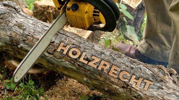 Holznutzungsrecht