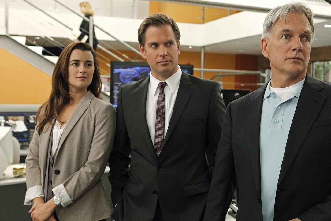 Ermitteln in einem neuen Fall: Gibbs (Mark Harmon, r.), DiNozzo (Michael Weatherly, M.) und Ziva (Cote de Pablo, l.) ... - Bildquelle: CBS Television