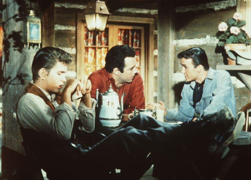 Little Joe (Michael Landon, l.) und Adam Cartwright (Pernell Roberts, M.) sehen in Sam Kirby (Ben Cooper, r.) einen wertvollen neuen Mitarbeiter und... - Bildquelle: Paramount Pictures