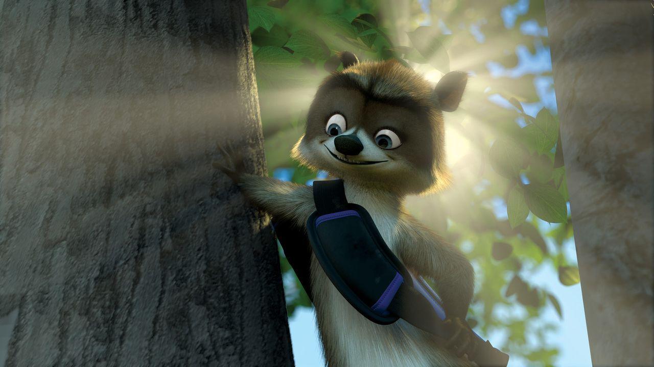 Der Waschbär Richie nimmt das Leben wie es gerade kommt. Doch als beim Versuch, dem Grizzlybären Vincent die Vorräte zu stehlen etwas schief geht... - Bildquelle: United International Pictures