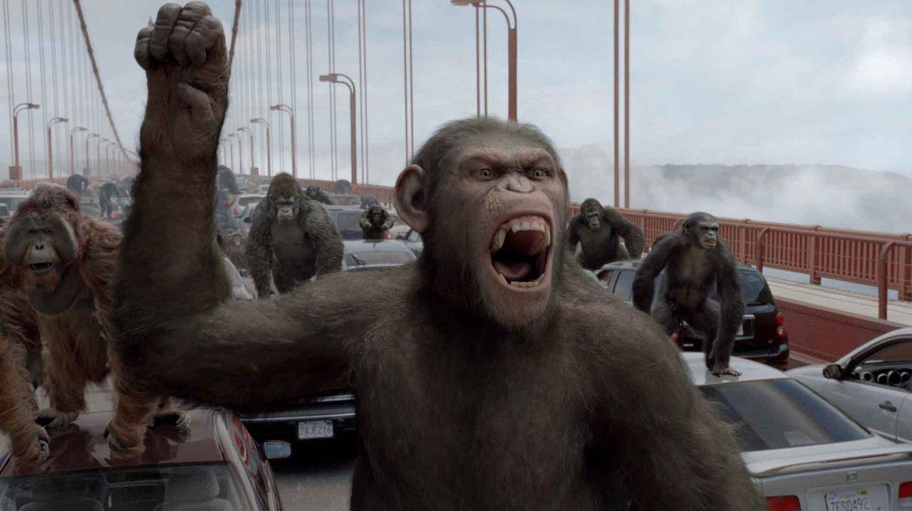 Führt erfolgreich die Revolution der Affen an: Caesar (vorne) ... - Bildquelle: 2011 Twentieth Century Fox Film Corporation. All rights reserved.
