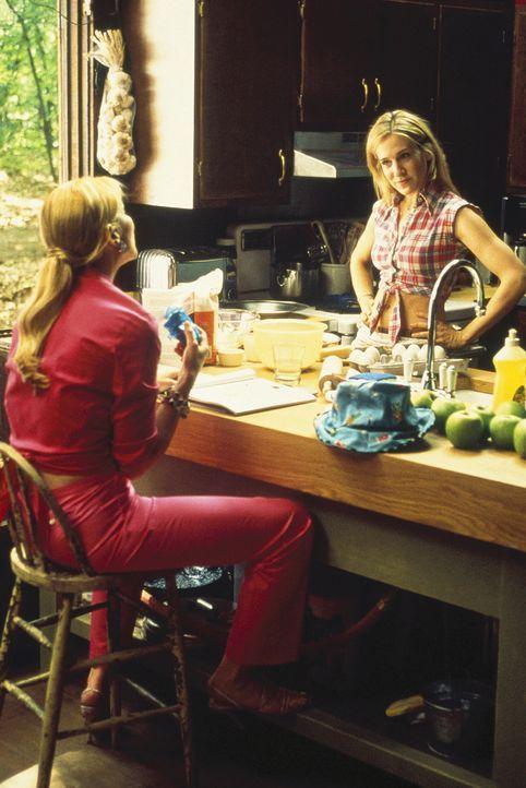 Auch auf dem Lande halten die Manhattan-Frauen, Sam (Kim Cattrall, l.) und Carrie (Sarah Jessica Parker, r.), fest zusammen. Beide finden das Leben... - Bildquelle: Paramount Pictures