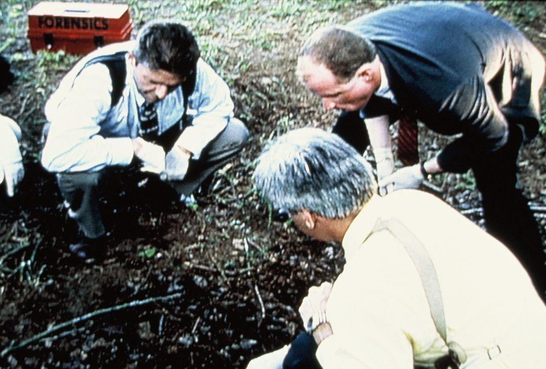 In Tampa, Florida wurden 1984 zehn Frauen vergewaltigt und anschließend ermordet. Einzige Gemeinsamkeit: An allen Opfern fand man rote Teppichfasern. - Bildquelle: Randy Jacobson New Dominion Pictures, LLC
