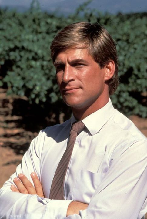 """(5. Staffel) - Greg Reardon (Simon MacCorkindale) hilft Angela, die Herrschaft über das Weingut """"Falcon Crest"""" wiederzugewinnen, auch wenn er ihre M... - Bildquelle: 1985   Warner Brothers"""