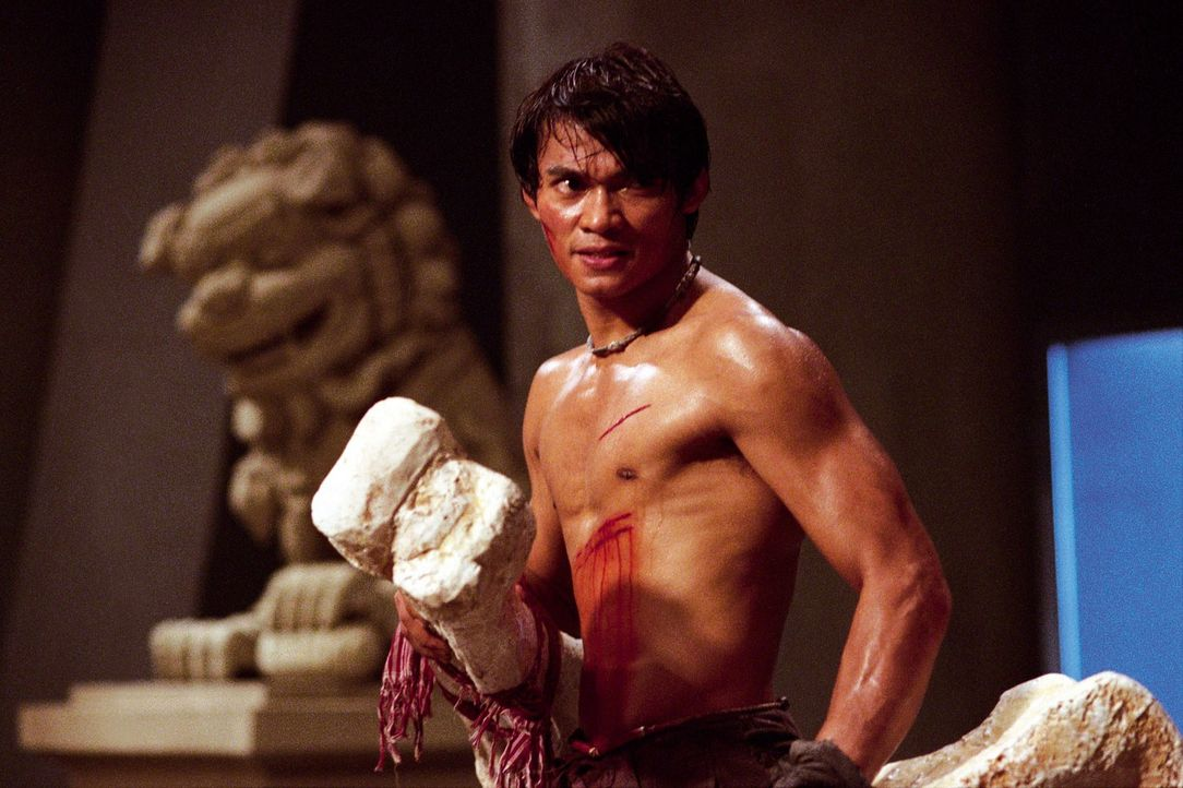 Kham (Tony Jaa) versucht alles, um die verschleppten Elefanten aus der Hand der kaltblütigen Gangster zu befreien ... - Bildquelle: e-m-s the DVD-Company