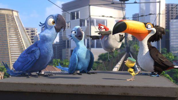 Rio - Gemeine Vogelhändler wollen die kostbaren Papageien Blue (l.) und Jewel...
