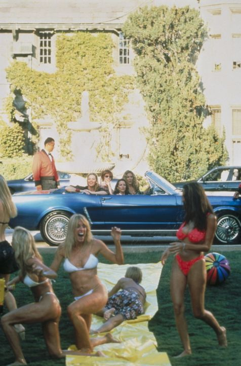 Sam (Kim Cattrall, l.), Miranda (Cynthia Nixon, 2.v.r.), Charlotte (Kristin Davis, 2.v.l.) und Carrie (Sarah Jessica Parker, r.) staunen nicht schle... - Bildquelle: Paramount Pictures