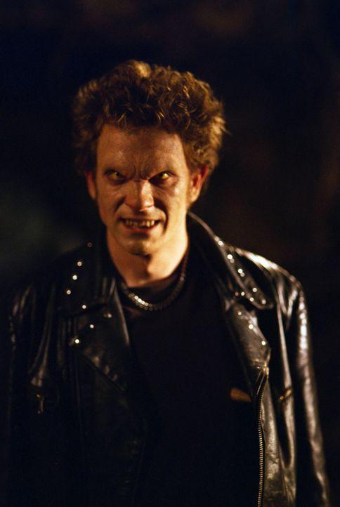 Wie lange treibt der Vampir Cyrus (Tom Lenk) in Sunnydale noch sein Unwesen? - Bildquelle: TM +   2000 Twentieth Century Fox Film Corporation. All Rights Reserved.