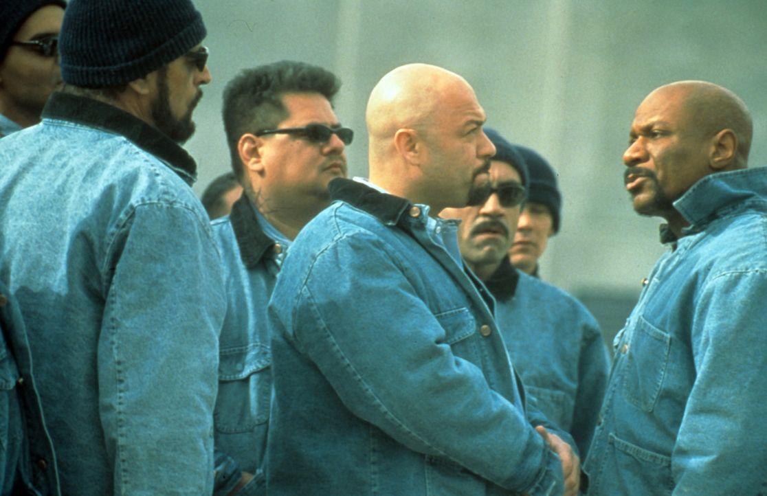 """Kaum im Gefängnis angekommen, legt sich der Schwergewichtsweltmeister James """"Iceman"""" Chambers (Ving Rhames, l.) mit allen an ... - Bildquelle: Miramax Films"""