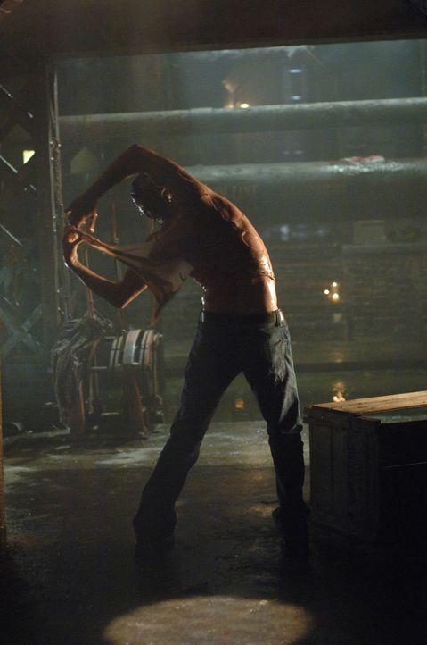 Dean (Jensen Ackles) oder der Formwandler? - Bildquelle: Warner Bros. Television