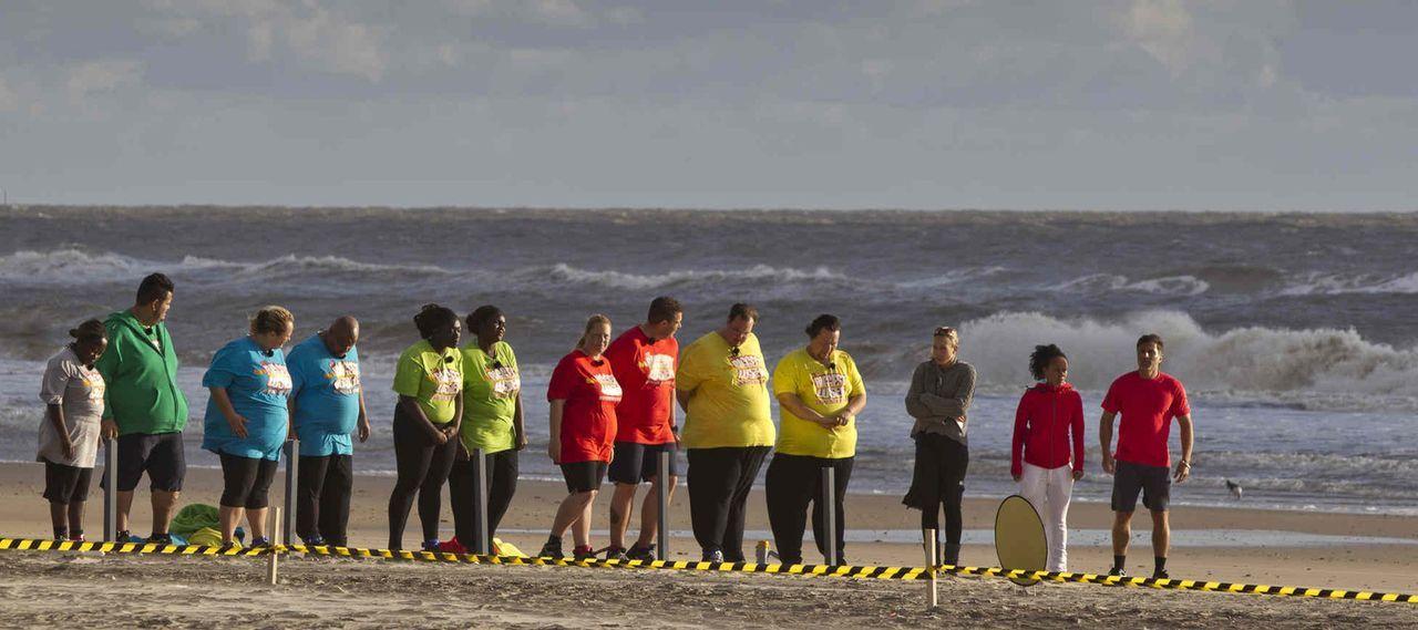 """Die Kandidaten bei """"The Biggest Loser"""" brennen darauf, ihr überflüssiges Gewicht loszuwerden. Doch das ist gar nicht so einfach ... - Bildquelle: Enrique Cano SAT.1"""