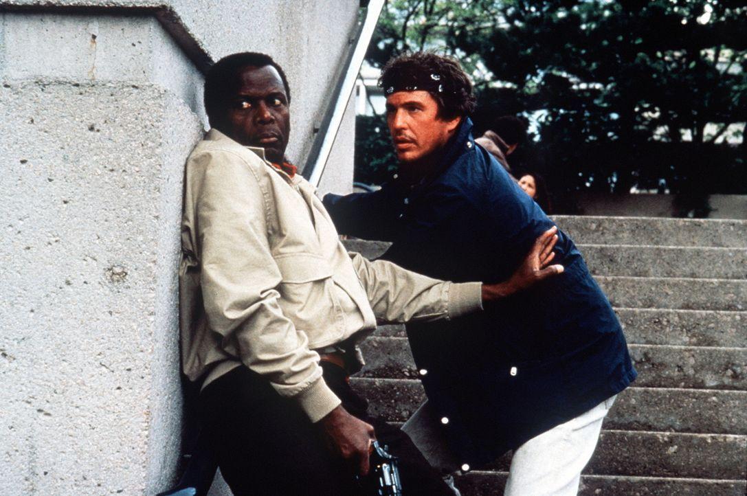 Als FBI-Agent Stanton (Sidney Poitier, l.) einen eiskalten Killer verfolgt, flüchtet dieser bis in die unwegsamen Rocky Mountains im Grenzgebiet zu... - Bildquelle: Buena Vista Pictures