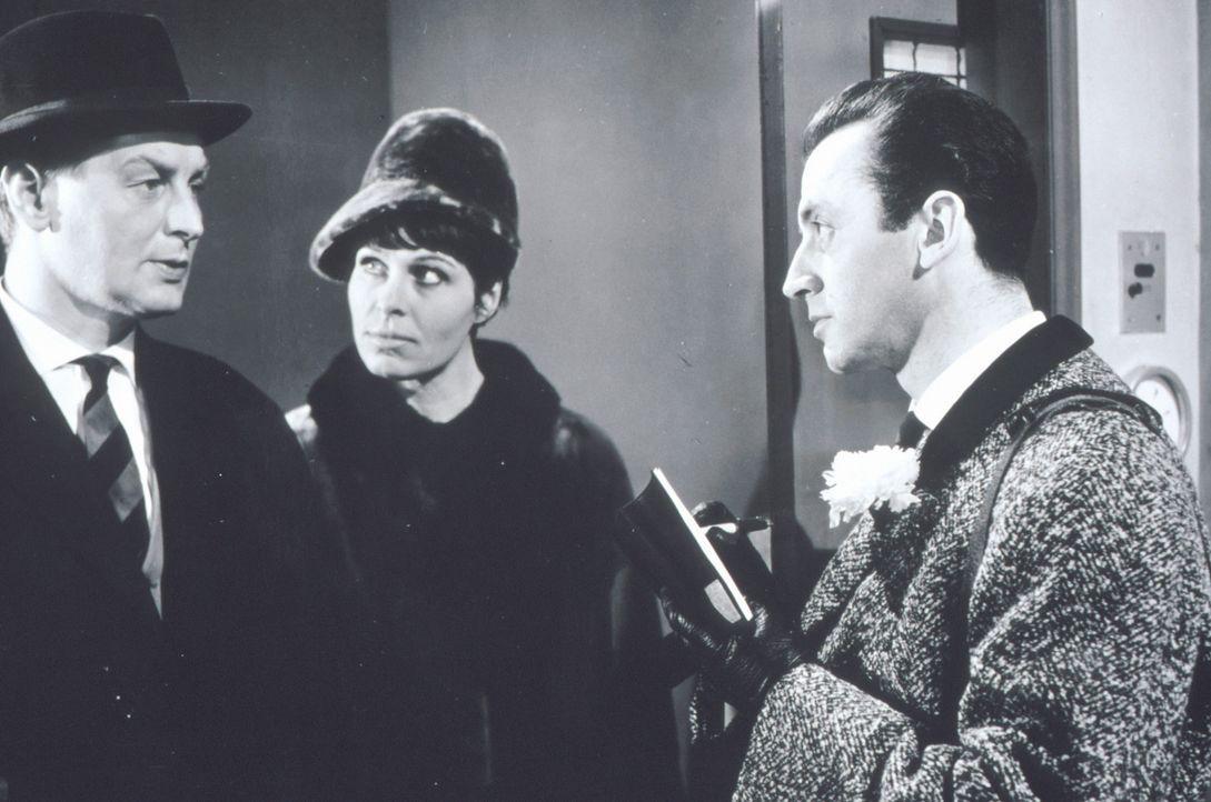 Beryl (Barbara Rütting, M.) und Josua Harras (Eddi Arent, r.) nehmen Frank Sutton (Günter Pfitzmann, l.), den Besitzer einer Tiergroßhandlung etw... - Bildquelle: Constantin Film