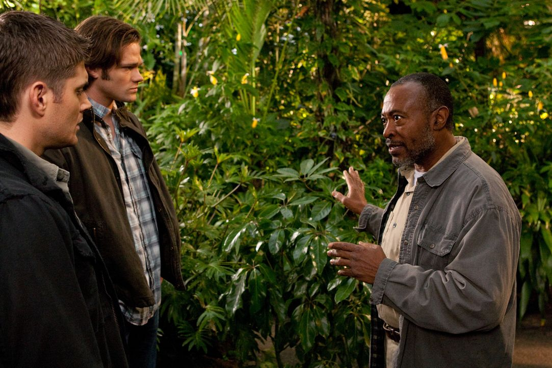 Sam (Jared Padalecki, M.) und Dean (Jensen Ackles, l.) werden von Jägern getötet und finden sich im Himmel wieder. Castiel nimmt Kontakt zu ihnen au... - Bildquelle: Warner Brothers