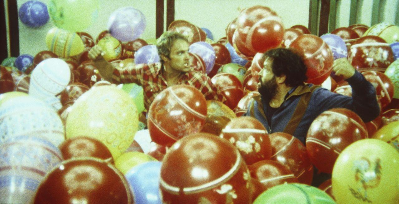 Die beiden schlagkräftigen Haudegen Kid (Terence Hill, l.) und Ben (Bud Spencer, r.) versuchen zwar oft, sich gegenseitig auszutricksen - im Grunde... - Bildquelle: Columbia Pictures