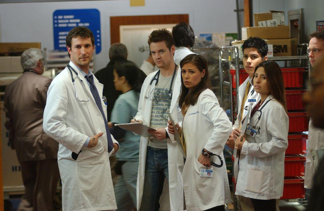 Ray (Shane West, 2.v.l.), Abby (Maura Tierney, 3.v.l.) und ein paar Medizinstudenten sind geschockt, als Mr. Rubadoux Carter (Noah Wyle, l.) beschim... - Bildquelle: WARNER BROS