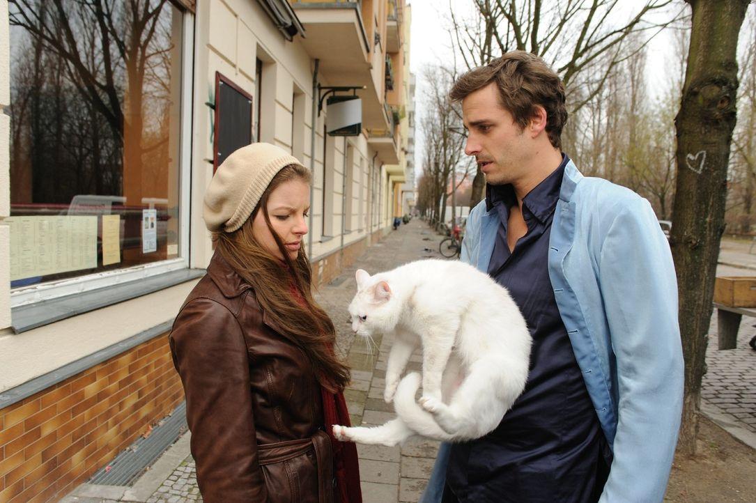 Um Laura (Yvonne Catterfeld, l.) eine Freude zu machen, organisiert Erzengel Uriel (Max von Thun, r.) eine neue Katze für sie - und verliert sein H... - Bildquelle: SAT.1