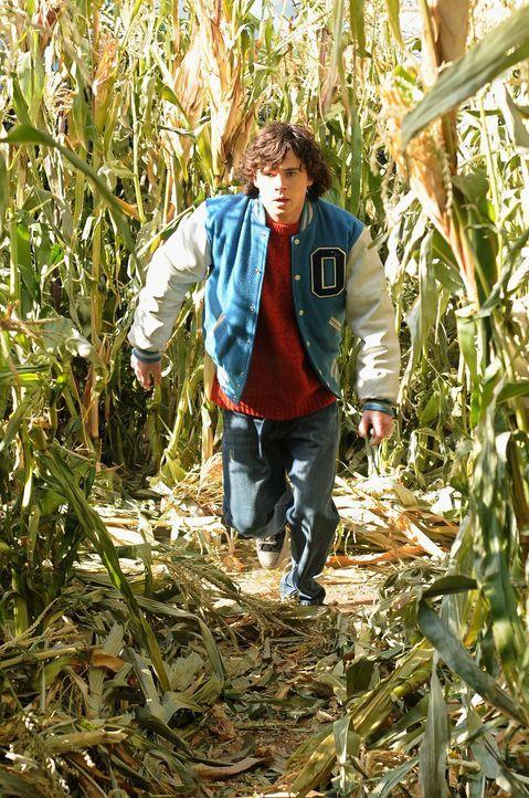 Ob er sich im Mais-Labyrinth verlaufen hat? Axl (Charlie McDermott) ... - Bildquelle: Warner Brothers