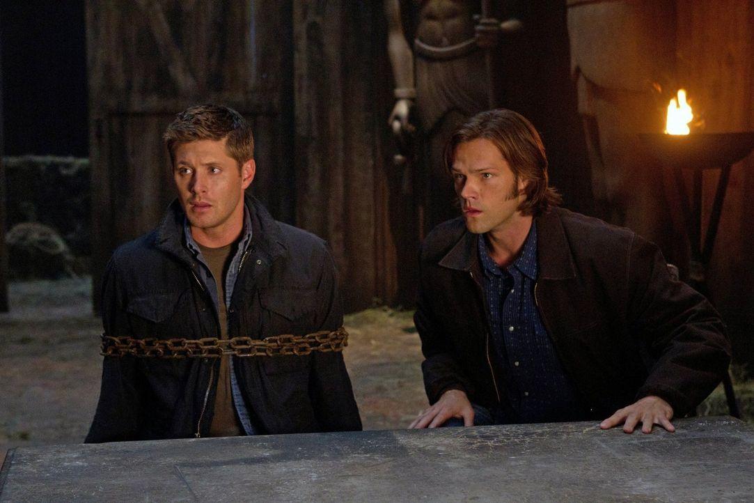 Sind einem mysteriösen Todesfall auf der Spur: Dean (Jensen Ackles, l.) und Sam (Jared Padalecki, r.) ... - Bildquelle: Warner Bros. Television