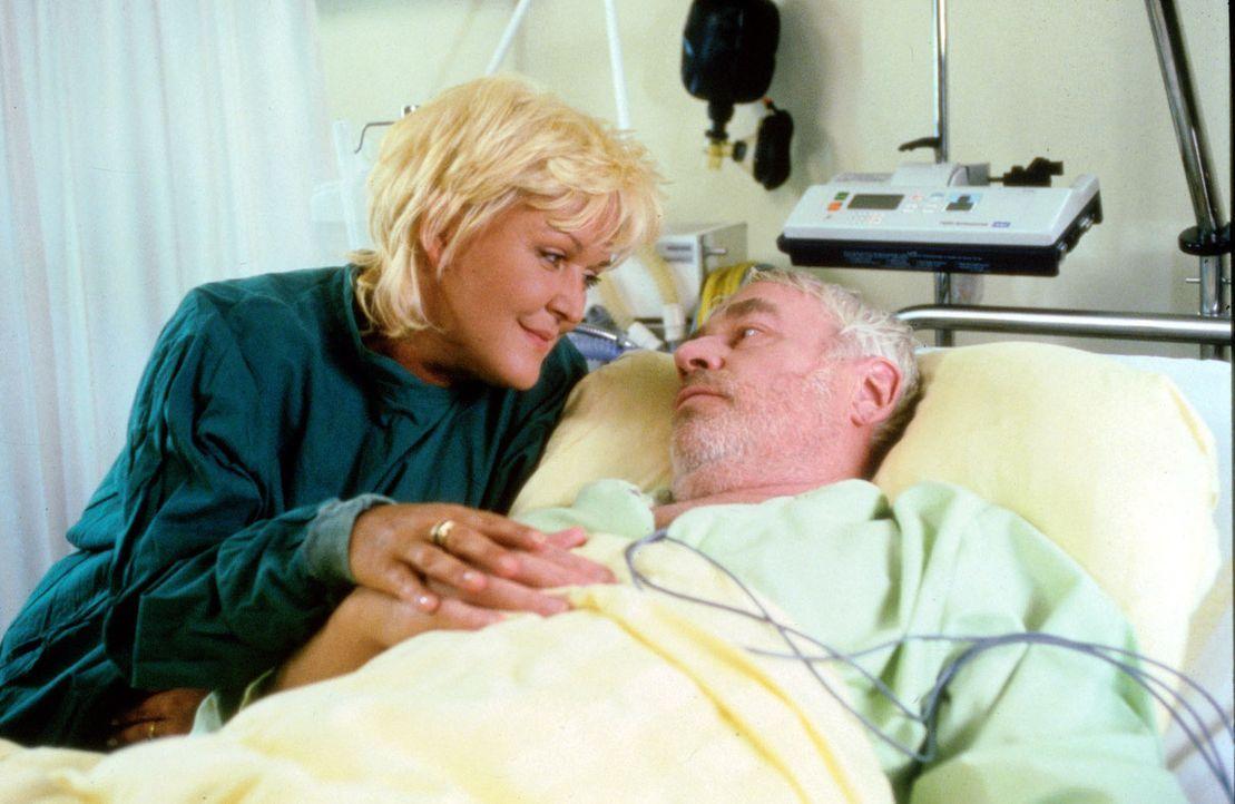 Frau Luther (Angelika Milster, l.) muss endlich einsehen, dass ihr Mann (Hartmut Reck, r.) keineswegs ein Hypochonder ist, nachdem er mit einem akut... - Bildquelle: Noreen Flynn Sat.1