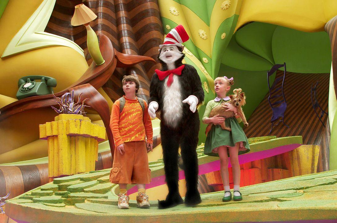 Wenn der lustige Kater mit Hut (Mike Myers, M.) einem Jungen (Spencer Breslin, l.) und einem Mädchen (Dakota Fanning, r.) an einem langweiligen Reg... - Bildquelle: TM &   2003 DreamWorks LLC. All Rights Reserved.