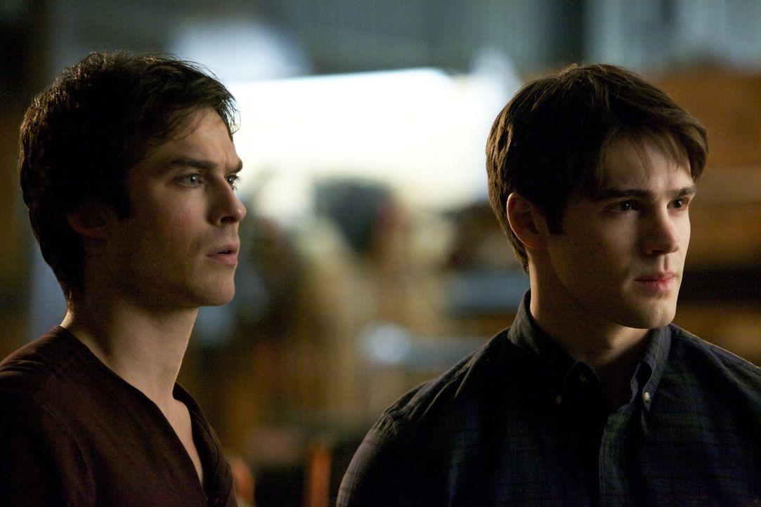 Damon und Jeremy - Bildquelle: Warner Bros.Entertainment Inc.