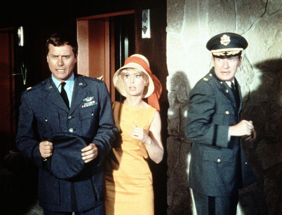 Tony (Larry Hagman, l.), Jeannie (Barbara Eden, M.) und Roger (Bill Daily, r.) jagen durch Honululu, um König Kamehameha wieder einzufangen, den Jea... - Bildquelle: Columbia Pictures